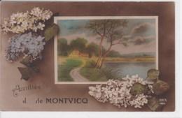 03 MONTVICQ Amitiés De Fantaisie - France