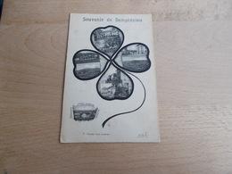 Souvenir De Demptezieu - Frankreich