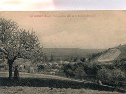 LE GOULET(ARBRE) - France