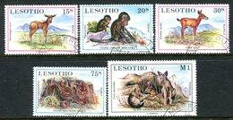 Lesotho 1984 Baby Animals Set Used (SG 611-615) - Lesotho (1966-...)