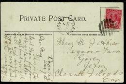 Ref 1281 - Early Canada Postcard - Cycle Path Elm Park Winnipeg To Jersey - Good Dana Sask Cancel - 1903-1908 Reign Of Edward VII