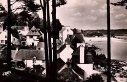 CPSM - PORT-MANEC'H - Vue Sur Le Quartier Du Port Et Les Villas - France