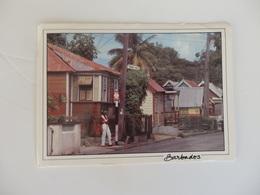 Barbados, Traditionnel Homes. - Otros