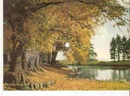 Old Musical 45rpm Record Postcard Schallbildkarte Herbststimmung Schleswig Holstein Buona Sera Foxtrot De Rose Weingarte - Unclassified