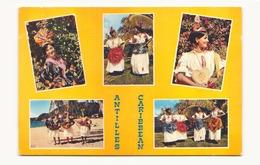ANTILLES CARIBBEAN - Antilles