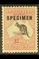 "1915-27  £2 Black And Rose Kangaroo With ""SPECIMEN"" Overprint, SG 45s, Very Fine Mint. For More Images, Please Visit Htt - Australie"