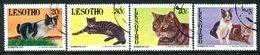 Lesotho 1993 Domestic Cats Set Used (SG 1178-1181) - Lesotho (1966-...)