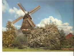 Musical 45rpm Vinyl Record Postcard I Love You Baby Foxtrot Anka Hansen Schallbildkarte Windmuhle Windmill Lower Saxony - Vinyl Records