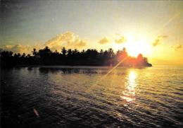[MD3000] CPM - MALDIVE - KURAMATHI - ART EDITION - BY ERIC KLEMM - Non Viaggiata - Maldives