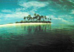 [MD3002] CPM - MALDIVE - UNINHABITED ISLAND - ART EDITION - BY ERIC KLEMM - Non Viaggiata - Maldive