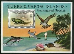 Turks & Caicos Islands 1979 Iguana Birds Reptiles Animal Sc 385 M/s MNH # 5920 - Birds