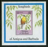 Antigua 1984 Song Birds Wildlife Animal Fauna Sc 778 M/s MNH # 13084 - Birds