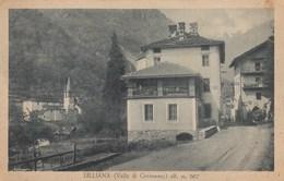 LILLIANES-LILLIANA-GRESSONEY-AOSTA--CARTOLINA NON VIAGGIATA ANNO 1925-935 - Aosta