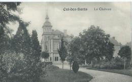 Cul-des-Sarts - Le Château - Edit. E. Douniau - Cul-des-Sarts