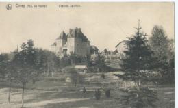 Ciney (Pce. De Namur) - Château Salnfoin - Ed. Nels No 84 - Ciney