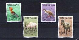 Oman. Animaux - Oman