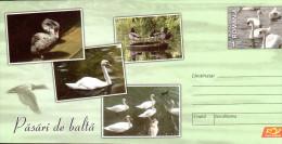 Romania Postal Stationery / Waterfowl - Cygnes