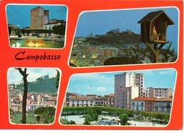 BELLISSIMA CARTOLINA  CAMPOBASSO E186 - Cartoline