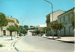 BELLISSIMA CARTOLINA  S.ELENA SANNITA E189 - Cartoline
