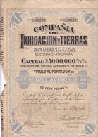 COMPAÑIA DE IRRIGACION Y TIERRAS EN MENDOZA SA ACCION POR $100 AÑO 1911 ACTION - BLEUP - Eau