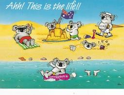 Australia Beach Fun Postcard Used Good Condition - Greetings From...