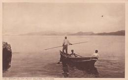FISH SPEARING OFF POINT BALEINE. TRINIDAD. F P BRUCE AUSTIN. CPA CIRCA 1920s - BLEUP - Trinidad