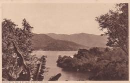 SAVONETTA BAY & ST MARY'S POINT. TRINIDAD. F P BRUCE AUSTIN. CPA CIRCA 1920s - BLEUP - Trinidad
