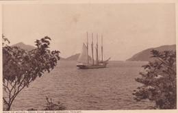 BOCA DE MONOS. FROM POINT BALEINE VERANDAH. TRINIDAD. F P BRUCE AUSTIN. CPA CIRCA 1920s - BLEUP - Trinidad