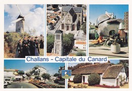 CHALLANS CAPITAL DU CANARD , Multi-vues - Challans