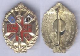 Insigne De La 9e Section D'Infirmiers Militaires - Servicios Medicos