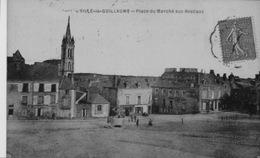 PLACE    DU  MACHÉ  AUX  BESTIAUX - Sille Le Guillaume