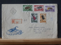 79/966/7A  2 LETTRE HONGRIE - Insects