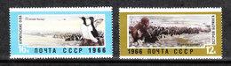 U.R.S.S.  - 1966.  Oche (Isole Kurili ) ; Otarie ( Stretto Di Bering ). Geese (Kurili Islands); Otarie (Bering Strait). - Oies