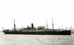 Shipper +-14  * 9 CM BARCO BOAT Voilier - Bateaux