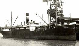 ELSA +- 15 * 9 CM BARCO BOAT Voilier - Boats
