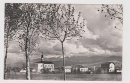 SANTA GIUSTINA BELLUNESE   - F.p. - Anni '1950 - Belluno