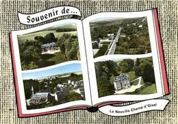 1 Cpsm Souvenir De La Neuville Champ D'oisel - France