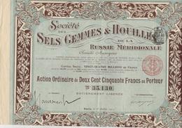 SOCIETE SELS GEMMES ET HOUILLES RUSSIE MERIDIONALE  1 ACTION DE PRIORITE + 1 ACTION ORDINAIRE 250 FRS -ANNEE 1911 - Mines