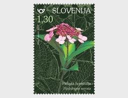 Slovenië / Slovenia - Postfris/MNH - Complete Set Flowers 2019 - Slovenië