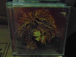 Janet Jackson- The Velvet Rope - Disco, Pop