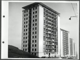 Photo Originale -  Rhône 69 Lyon - Cité HLM Le Belvédère Au Début De Sa Construction - Places