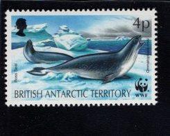 740448746  POSTFRIS  MINT NEVER HINGED EINWANDFREI SCOTT 192 ROSE SEAL - Territoire Antarctique Britannique  (BAT)