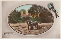 RARE! The Reapers, Farming Scene, UK, C. 1910s, Tinted Real Photo Postcard - Farms