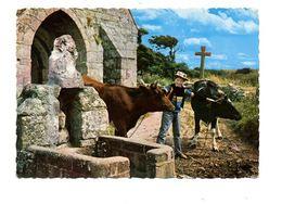 1967 Paysage Breton  (carte Jean Audierne) - Quimper