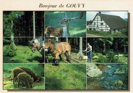 GOUVY-CERF-SANGLIER-CHEVAUX-MULTIVUES - Gouvy