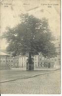 Ardoye Ardooie L'arbre De La Liberté   (945) - Ardooie