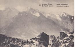 CONGO BELGE :  Monts Ruwenzori .  Entier Postal - Congo Belge - Autres