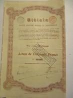 Biélaïa - Société Anonyme Minière Et Industrielle - Action De 50 Francs - Version 1904 - Russie