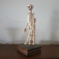 XIXe Siècle : Memento Mori Vanité Squelette Articulé En Ivoire Sculpté Sculpture Statue - 19th Century : Skeleton Ivory - Sculptures