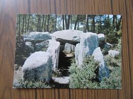 Bretagne     Dolmen De Crucuno à Plouharnel         Vieilles Pierres - Dolmen & Menhirs